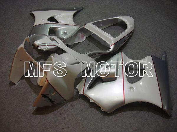 Kawasaki NINJA ZX6R 2000-2002 Injection ABS Fairing - Factory Style - Silver - MFS5602